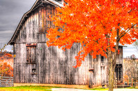 Autumn Barn_0265